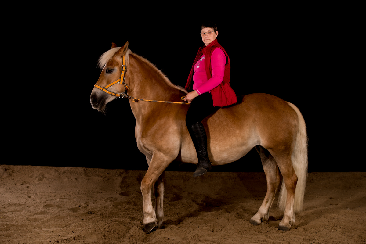 Shooting Chevaux - Lantremange